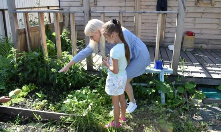 Жители Челябинской области стали активнее покупать садовые участки и дачные дома за счет средств