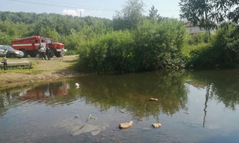В Златоусте (Челябинская область) в реке Тесьма утонул семилетний мальчик. Со слов очевидцев, ком