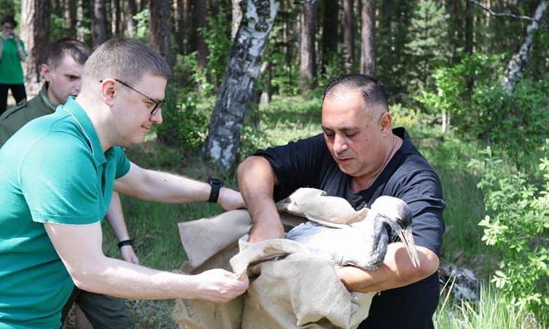 Руководитель единственного в Челябинской области приюта по реабилитации диких животных и птиц, из