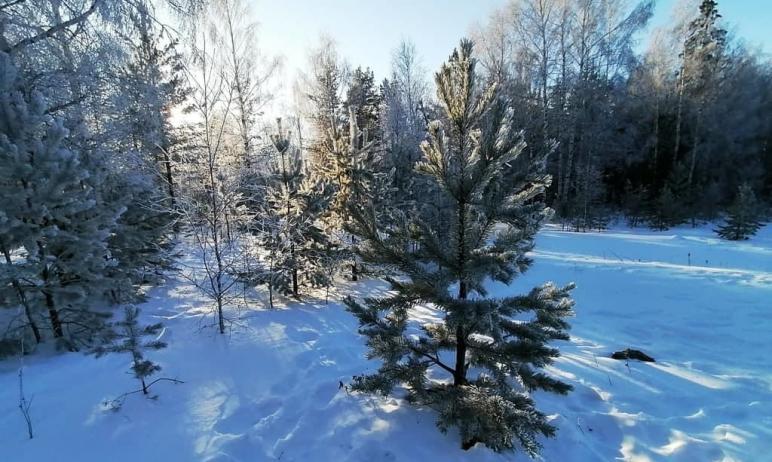 В национальном парке «Таганай» (Челябинская область) традиционно перед Новым годом усилили охрану
