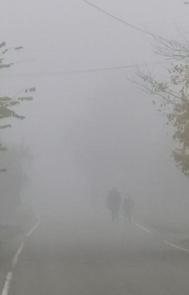 Минувшей ночью и утром 30 сентября в большинстве районов Челябинской области отмечались густые ту