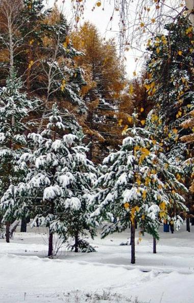 Во вторник, третьего 3 марта, в Челябинской области ожидается переменная облачность, на большей ч