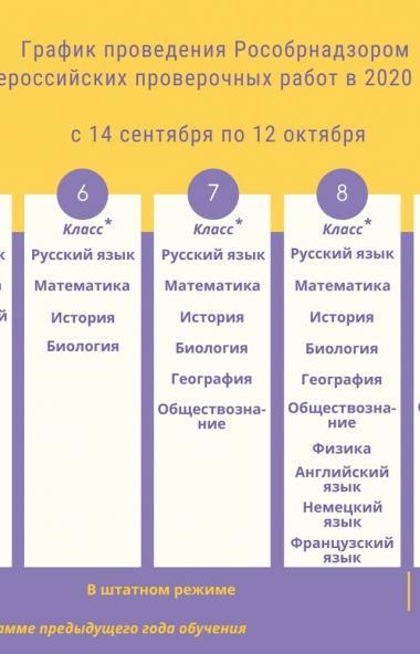 Почти половина (49%) родителей российских школьников выступили за отмену федеральной проверки зна