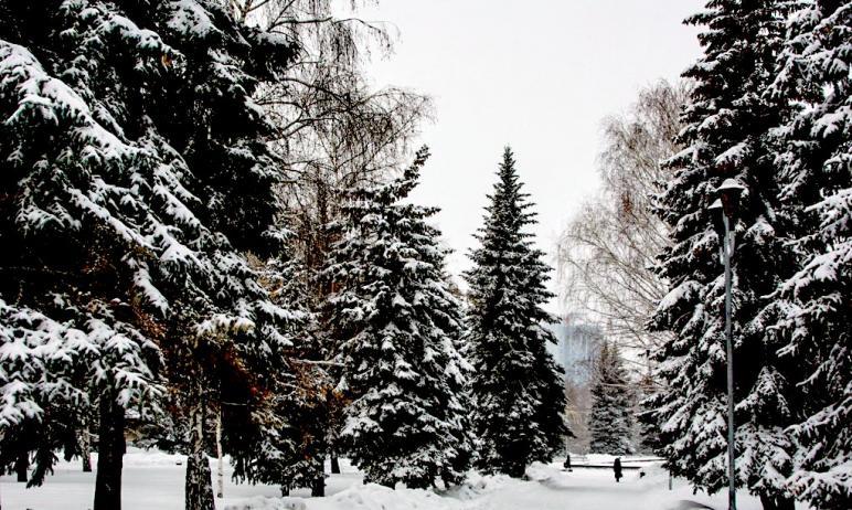 Геомагнитная обстановка в Челябинской области будет комфортной все новогодние и рождественские пр