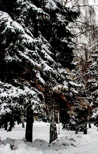 В предстоящие праздничные выходные, 22, 23 и 24 февраля, в Челябинской области ожидается не по-зи