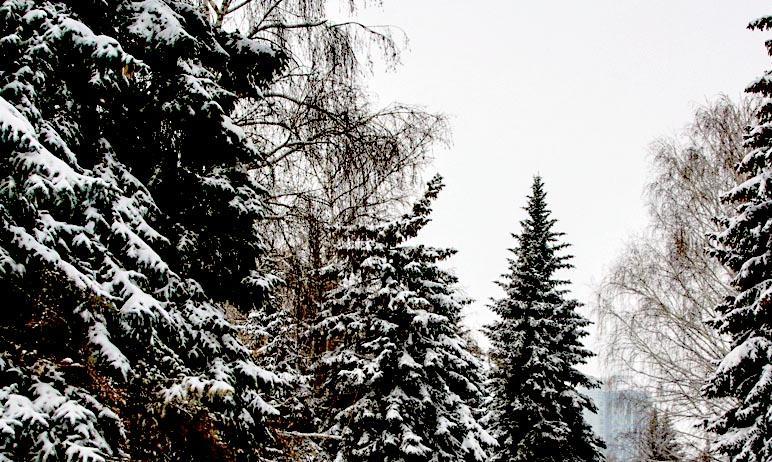 Во вторник, девятого марта, в Челябинской области ожидается облачная погода, местами небольшой сн