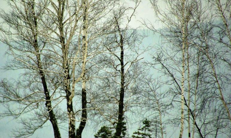 В четверг, 29 апреля, в Челябинской области ожидается облачная погода с прояснением, местами прой