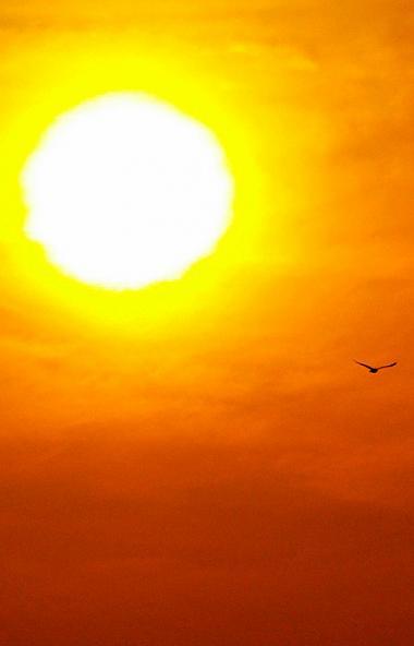 В пятницу, 20 марта, в 6 часов 53 минуты по московскому времени наступит День весеннего равноденс
