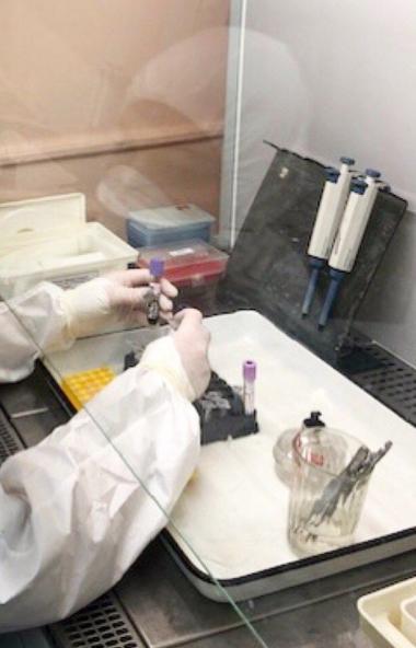 За последние сутки в России официально подтверждено 8 тысяч 946 новых случаев коронавирусной инфе