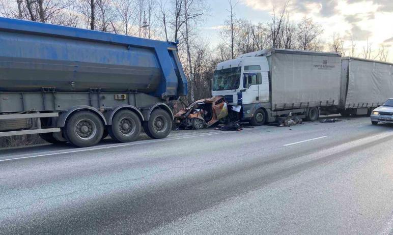 В Челябинской области на федеральной трассе М-5 «Урал» столкнулись три большегруза и легковой авт