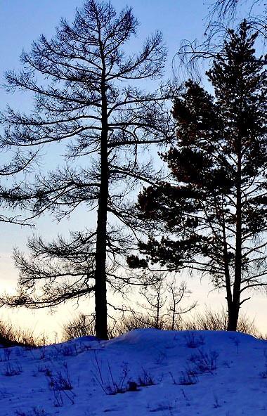В понедельник, 17 февраля, в Челябинской области ожидается переменная облачность, без существенны