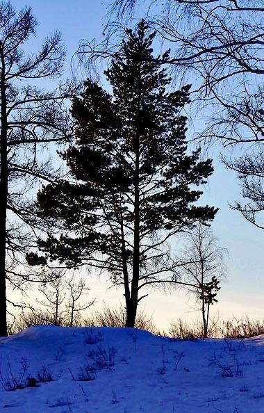 В среду, 19 февраля, в Челябинской области ожидается облачная погода с прояснением, местами пройд
