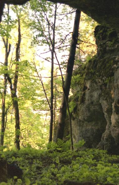 В Челябинской области на месте Ашинского пещерного комплекса может появиться природный парк. С та