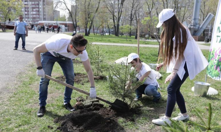 В субботу, восьмого мая, в Челябинске состоялась Международная акция «Сад памяти», генеральным па
