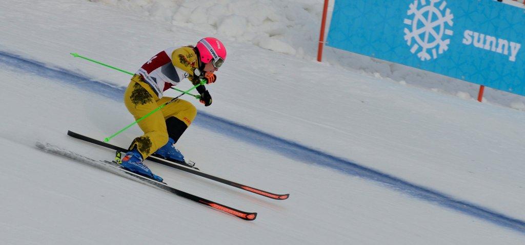 В состязаниях принимают участие 66 скикроссменов из 18 стран мира: 44 мужчины и 22 женщины. В со