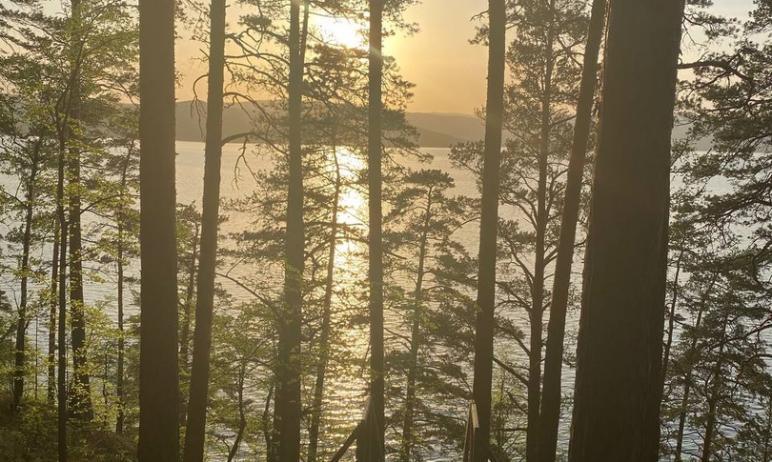 Качество воды в озере Тургояк (Челябинская область) в районе городского пляжа Миасса не соответст
