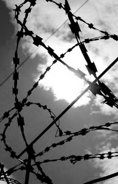 Генеральный прокурор России Юрий Чайка назвал количество уголовных дел, заведенных по фактам сове