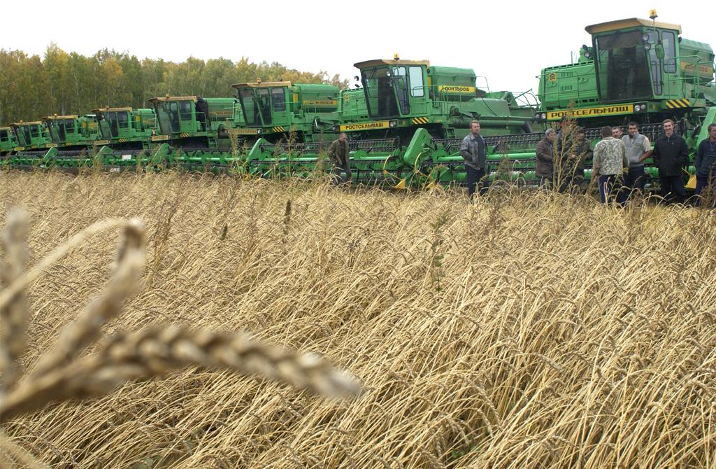 Как сообщил министр сельского хозяйства Челябинской области Сергей Сушков, урожайность превысила