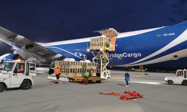 В Челябинск чартерным рейсом прилетели иностранные «пятачки».