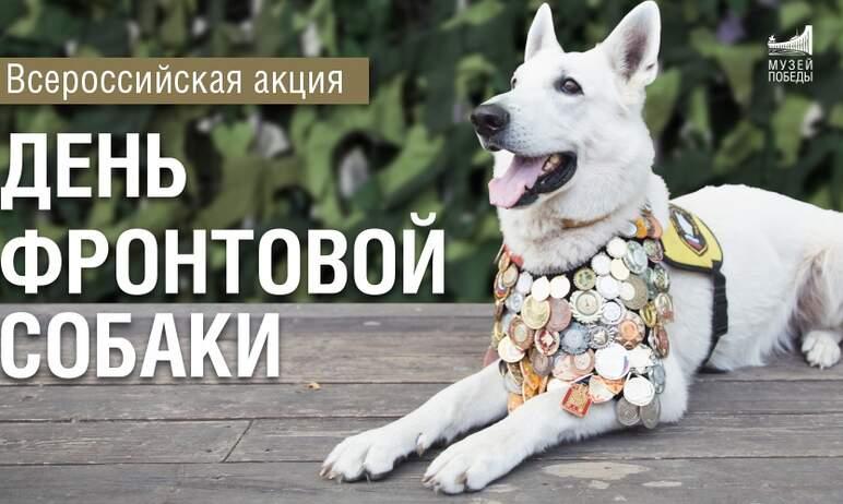 На следующей неделе, 19 августа, Государственный исторический музей Южного Урала приглашает собак