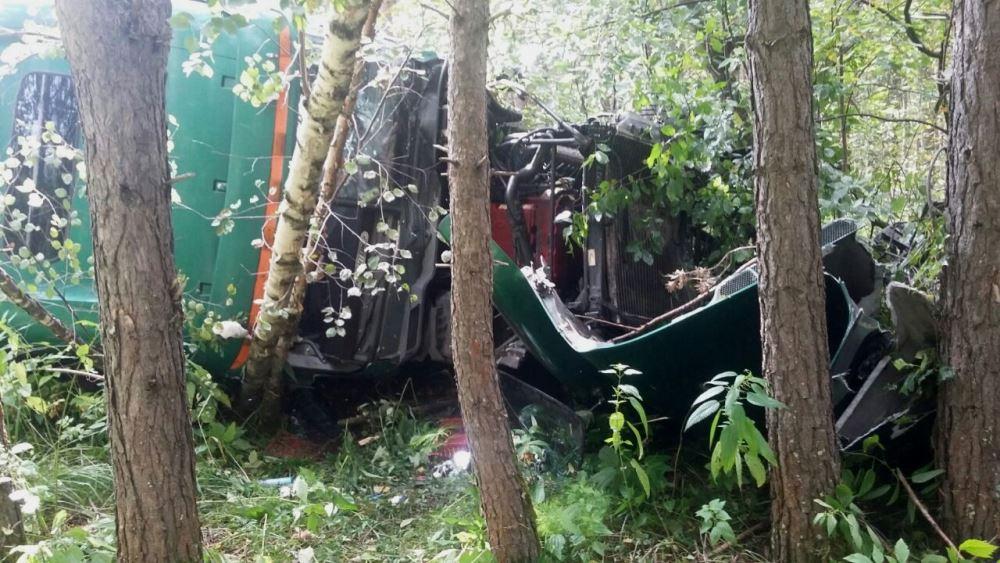 ДТП произошло, 9 августа, на участке трассы между Бакалом и Саткой. Фура улетела с дороги и задым