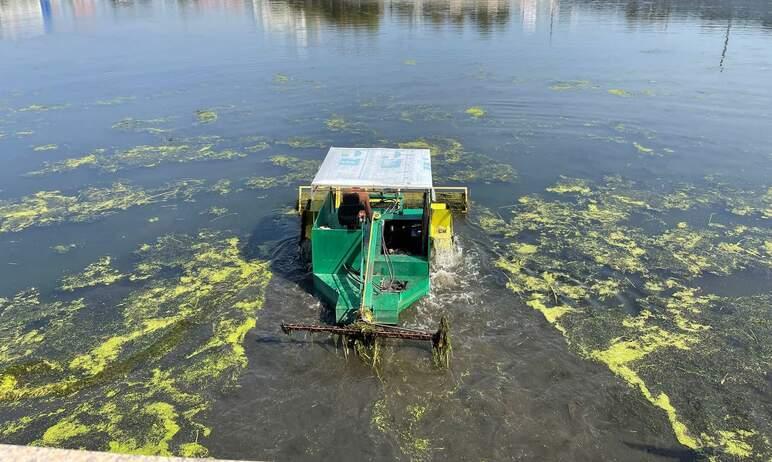 Челябинскую реку Миасс избавляют от мусора и растительности - по мере сил: финансирование в этом