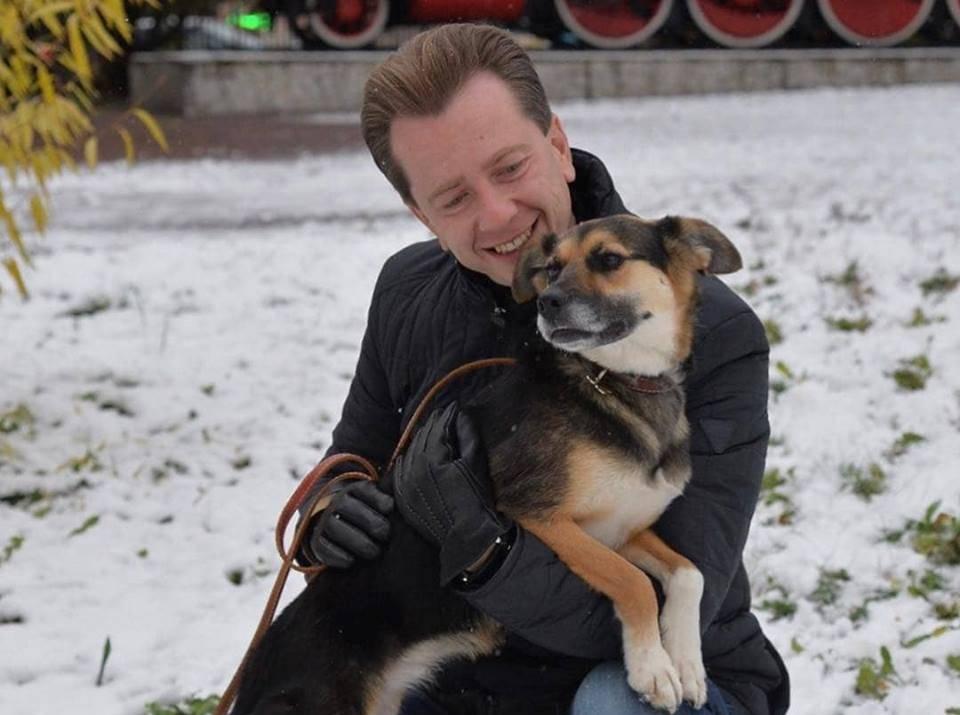 В Российской Федерации могут повсеместно разрешить регулировать численность безнадзорных животных