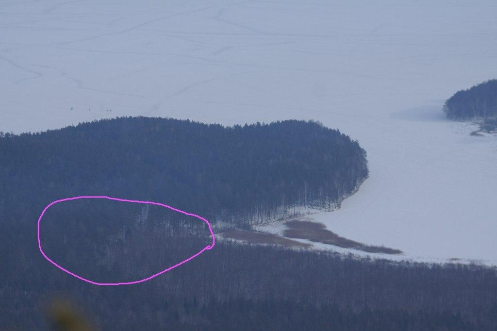 Напомним, по более ранней информации, предоставленной ГУ лесами региона, арендатор - ООО «МиассЛе