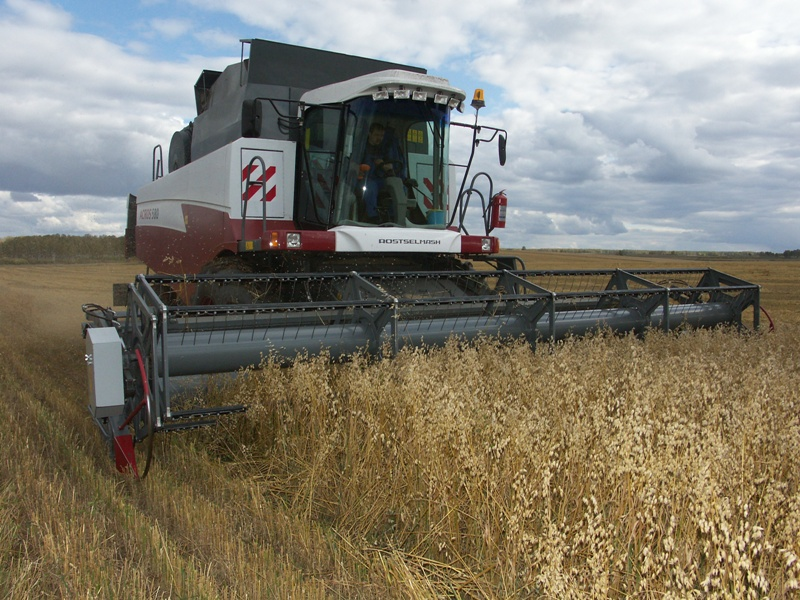 Но, несмотря на дождливые недели, в хозяйствах региона намолотили от 17 до 40 центнера на гектар.
