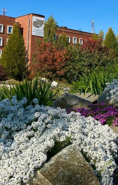 В Челябинском государственном университете (ЧелГУ) студенты двух факультетов переведены на дистан
