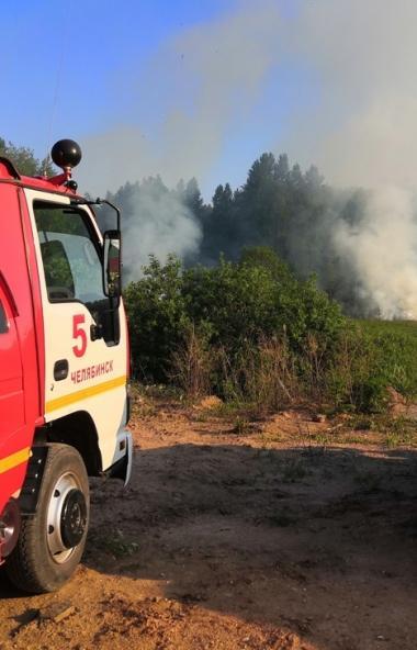 В Челябинске из-за возгорания пуха и сухой травы на берегу озера Смолино под угрозой оказались дв