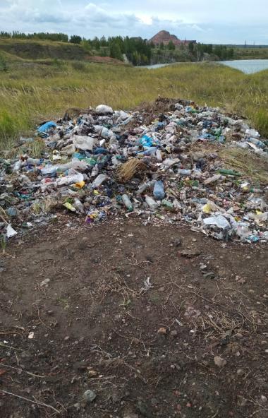 В Копейске (Челябинская область) выявлена несанкционированная свалка просроченной молочной продук