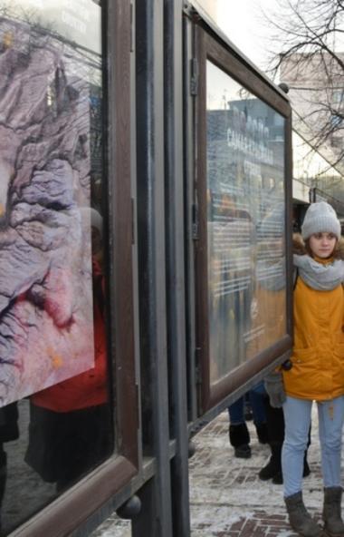 Во вторник, 10 декабря, в галерее «Открытый город» на Кировке открылась выставка работ-победителе
