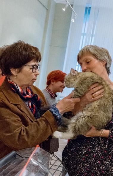 Сегодня, третьего марта, в музее изобразительных искусств Челябинска пройдет акция «У меня уже го