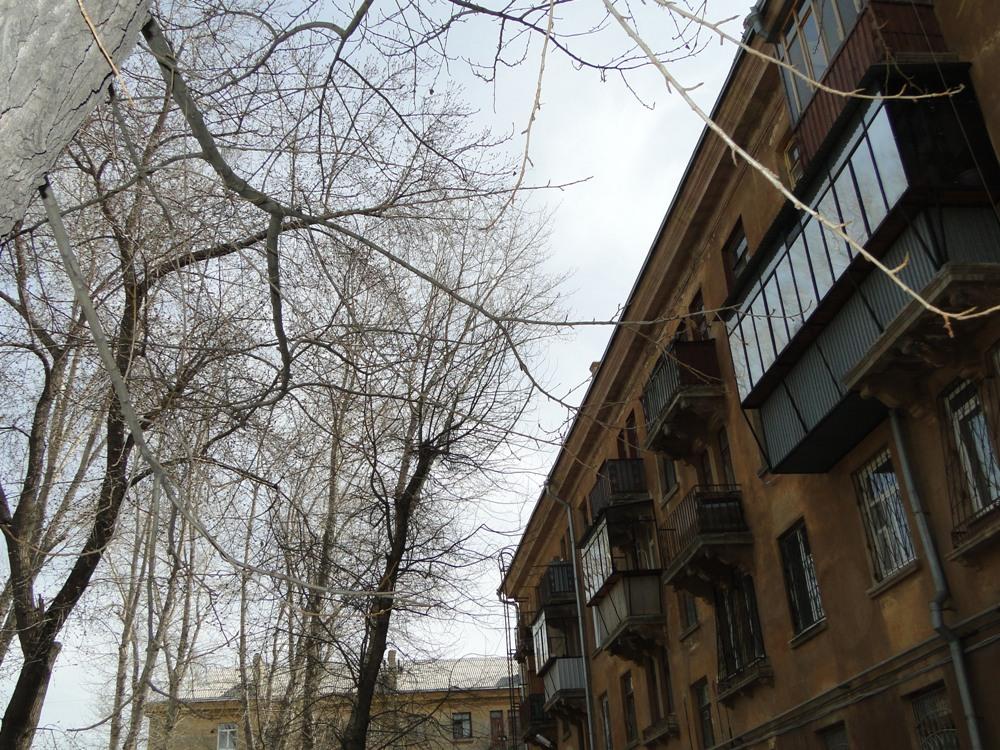 Как известно, период жизни тополя составляет 50 лет. Многие деревья во дворе дома уже разрушены и