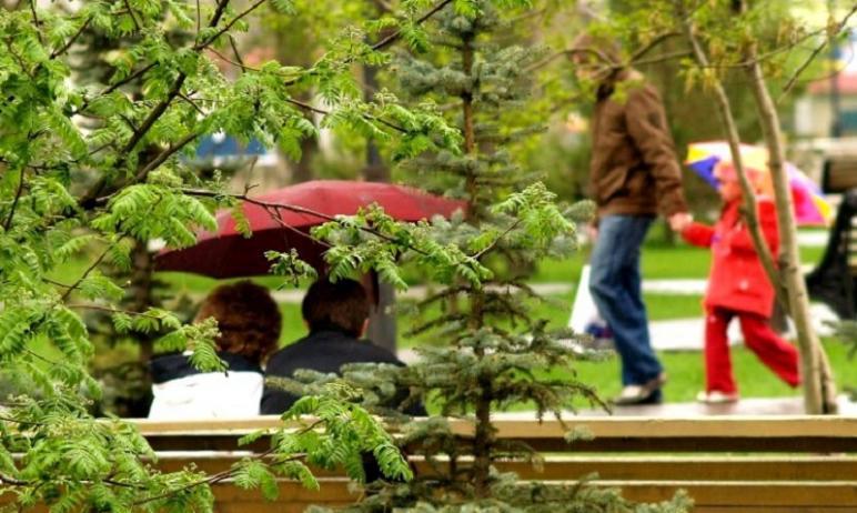 В Челябинск пришел долгожданный дождь. Вместе на город налетел ураганный ветер, град и гроза.