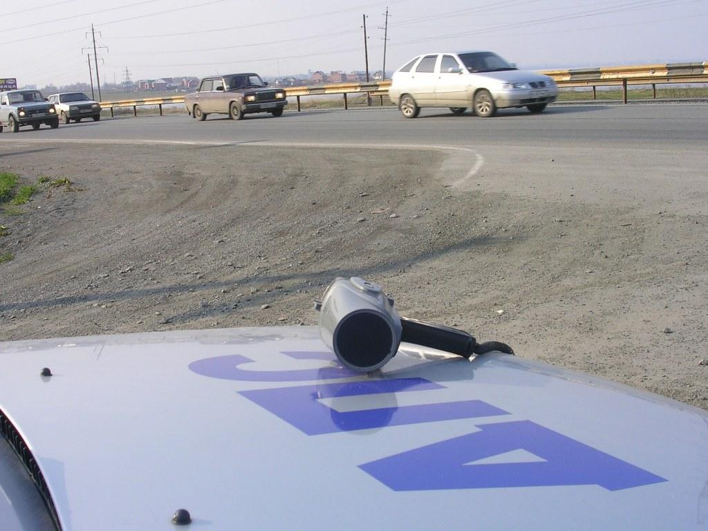 Инцидент произошел 25 января на автодороге Челябинск-Новосибирск. Сотрудники ДПС остановили служе