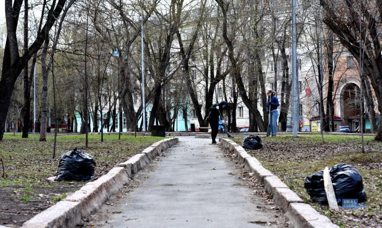 В преддверии сезона субботников в Челябинске горожанам напомнили, что белить деревья нельзя, крас