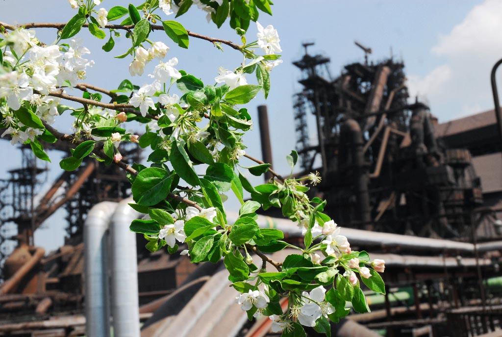 Арматура, лист и балка, поставленные на строительную площадку, изготовлены на прокатных станах ЧМ