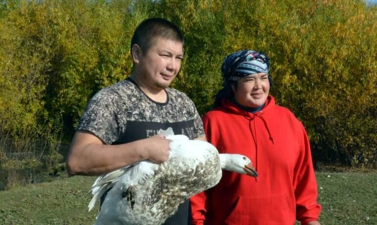 В Челябинской области выбрали получателей грантов «Агростартап» из числа 48-ми претендентов, пода