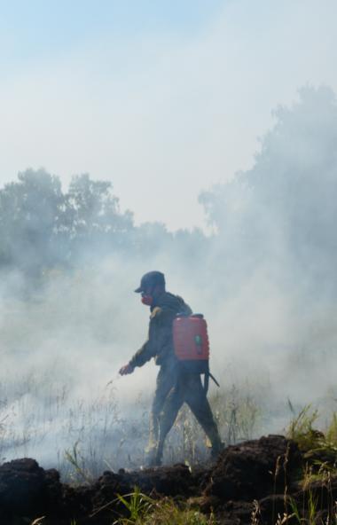 В связи с повышением температурного режима, отсутствием осадков и ростом числа лесных пожаров все
