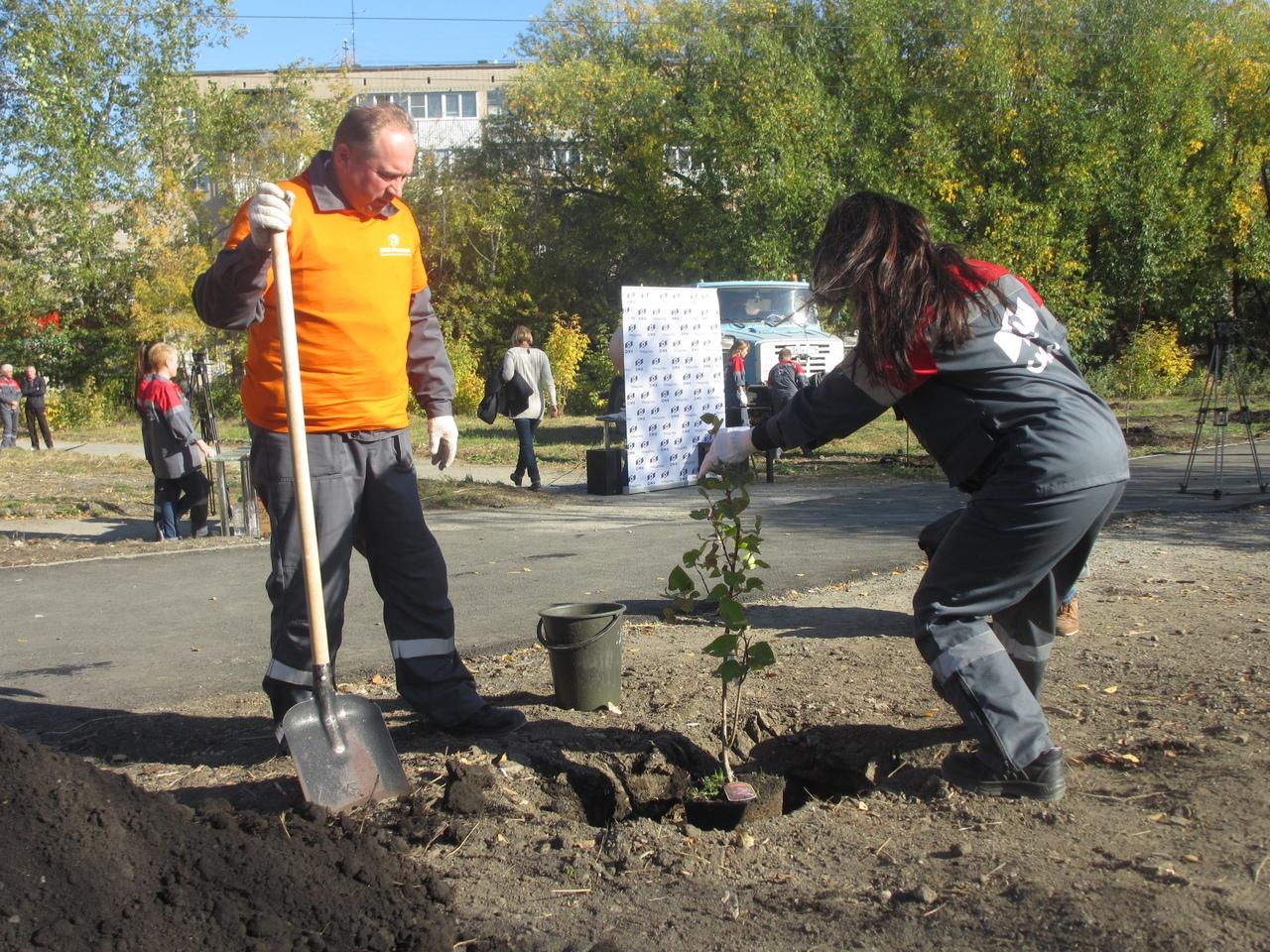 Сегодня, 24 сентября, в поселке Новосинеглазовский на улице Челябинской волонтеры входящего в сос