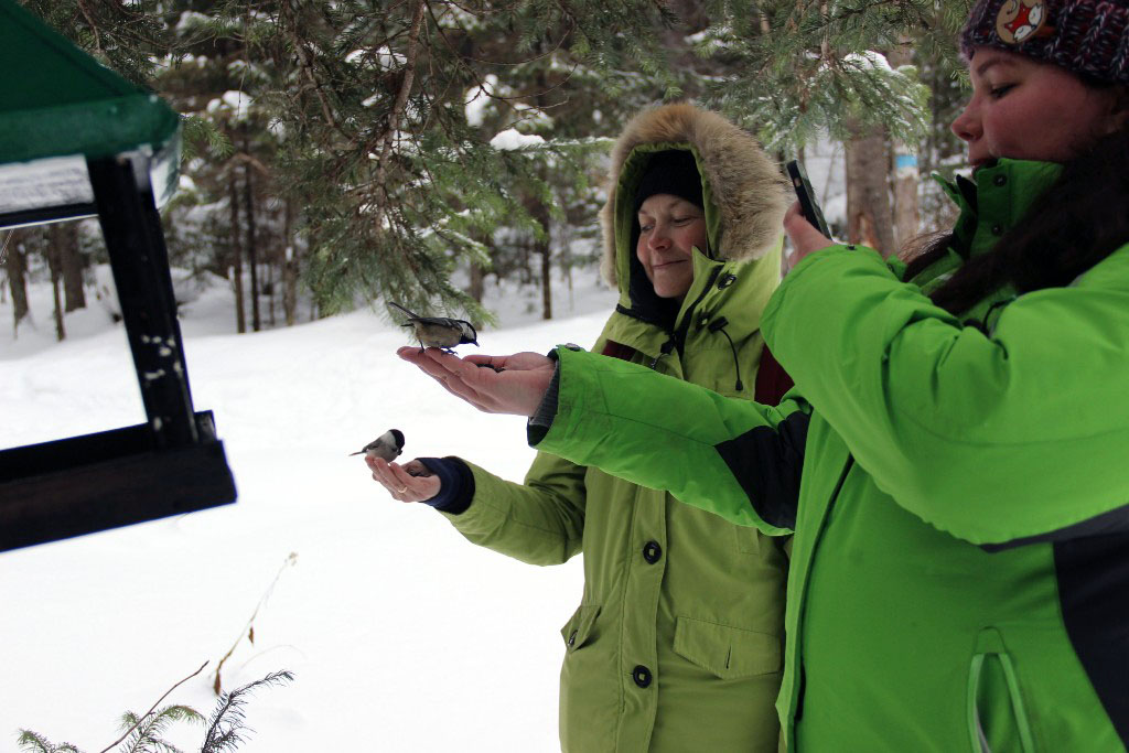 В национальном парке «Таганай» (Челябинская область) готовятся к новому волонтерскому сезону. Доб