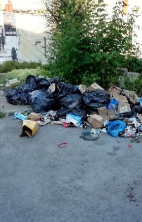 Стихийная свалка мусора вновь образовалась на Кировке возле книжных развалов (на перекрестке улиц