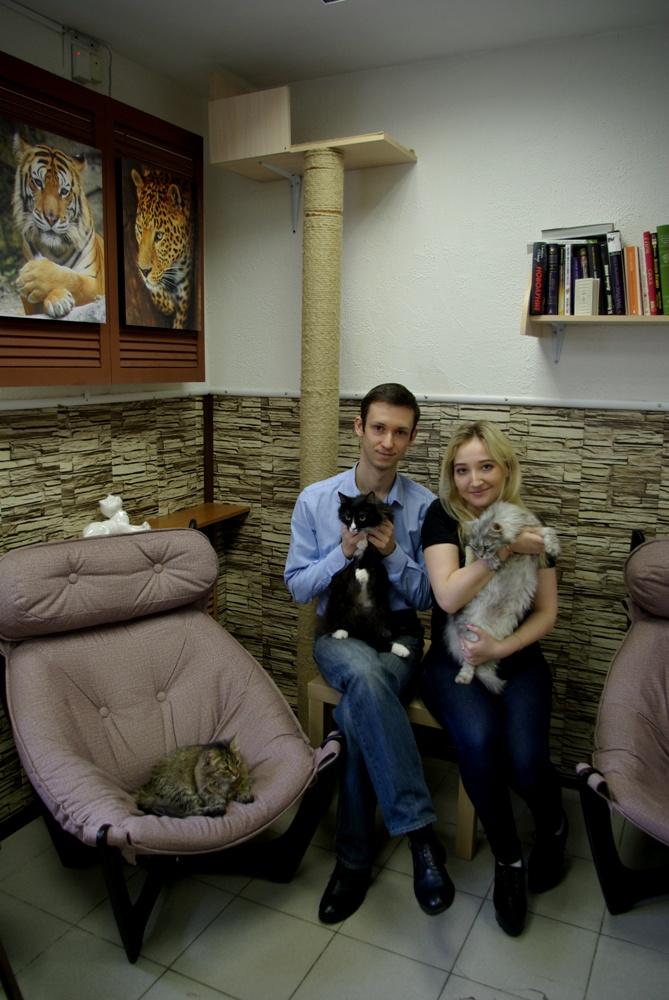 В стоимость услуги входит кофе, чай, различные сладости и общение с ласковыми и дружелюбными коти