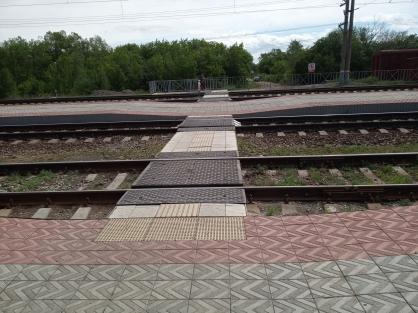 Жители села Варна (Челябинская область) на днях обратились на «прямую линию» с президентом РФ с ж