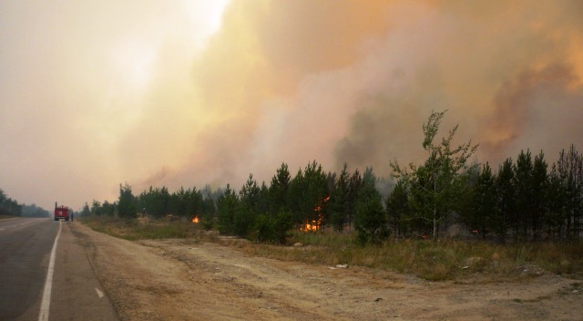 Высокая вероятность возникновения лесных пожаров сохраняется в ряде территорий Челябинской област
