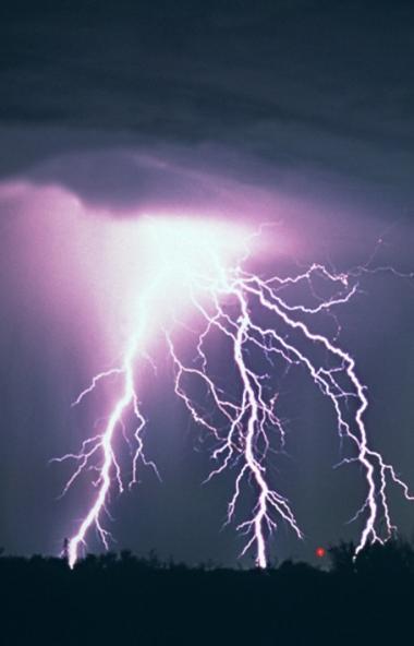 В Челябинской области 26-летний житель Златоуста, пасший скот во время грозы, погиб от удара молн