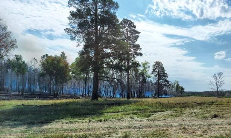 В Пластовском районе Челябинской области, где в воскресенье, 22 августа, в полдень разгорелся