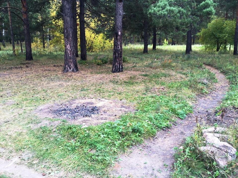 В Каштакском бору (Сосновский район, Челябинская область) демонтировали мангальные зоны. Риск воз